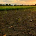 UGT apela a un diálogo social urgente para abordar la crisis climática