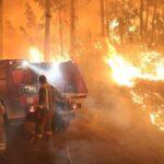 En Cantabria ya se han registrado cerca de 700 incendios forestales en lo que va de año